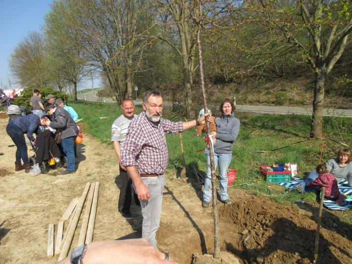 06.04.2019 - Stammbaumpflanzung in Marbach