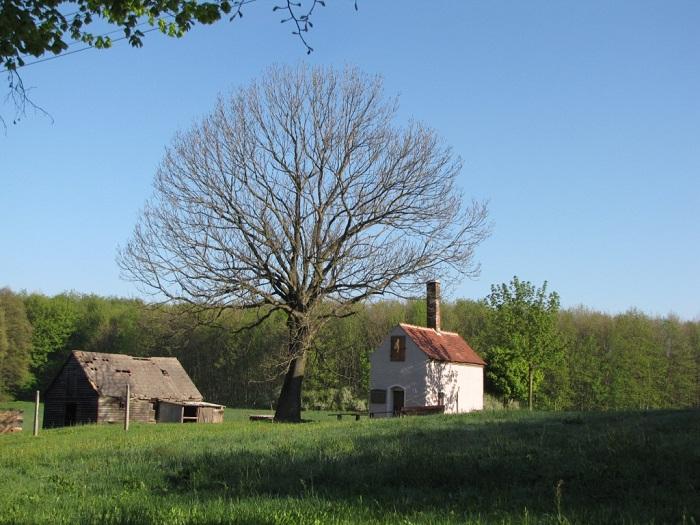 Das alte Backhaus von 1772 wurde wieder zu neuem Leben erweckt. Zu Veranstaltungen des Bergbauvereins wird dieser auch mal angeheizt und es gibt leckeren Kuchen.