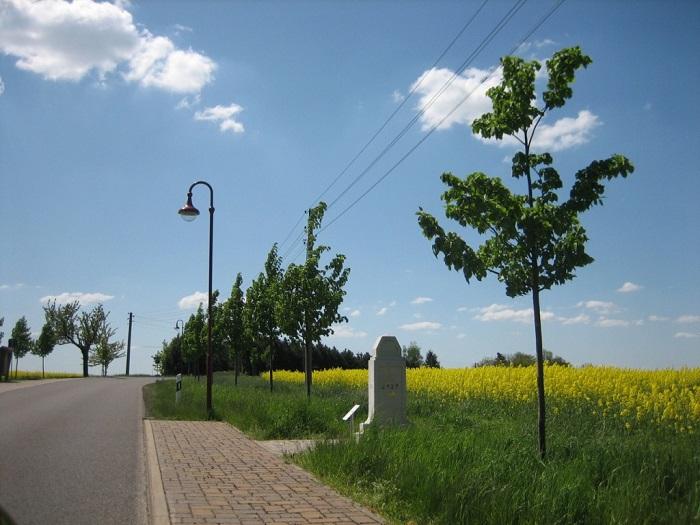 Historische Postmeilensäulen findet man in Kaltofen und Pappendorf.