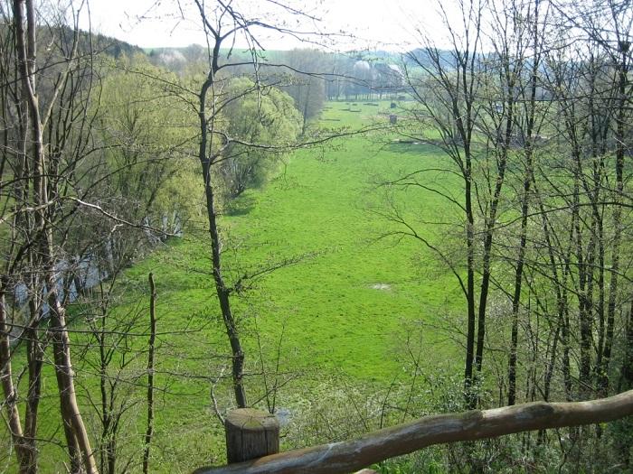 Blick vom Kronenberg auf die Striegis und den Reitplatz