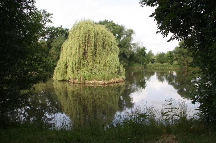 Der Teich an der alten Schäferei gehört zur Teichanlage des Rittergutes und wird vom Anglerverein bewirtschaftet.