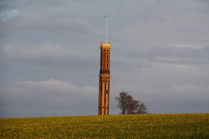 Das Wahrzeichen von Böhrigen - der restaurierte Aussichtsturm - geschmückt mit der weiß-grünen Flagge des Freistaates.